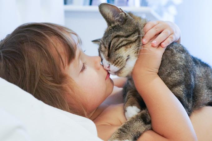 cat-show-love.jpg