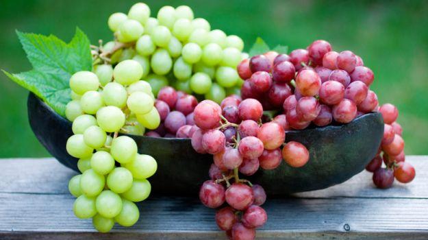 grapes_625x350_61443376353